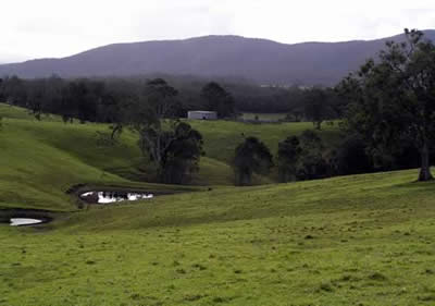 Picturesque Wandella Valley Cobargo Bega Valley NSW